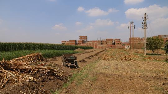 In dit dorp op het platteland van Egypte woont Mahmoud.