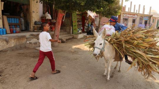 In het dorp van Mahmoud leeft bijna iedereen van de landbouw.