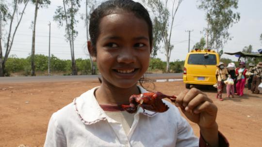 In Cambodje eet Lee gebakken babyvogeltjes.