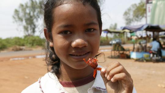 In Cambodja eet Lee graag gefrituurde kikkers.