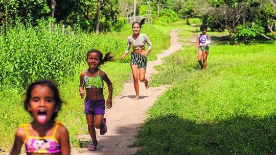 Hévila woont tussen de woudreuzen in het regenwoud van Brazilië.