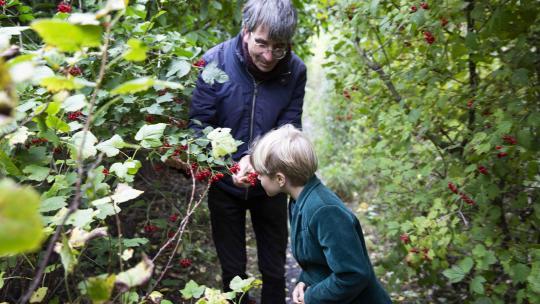 Sterre plukt eetbare vruchten en noten in het voedselbos.