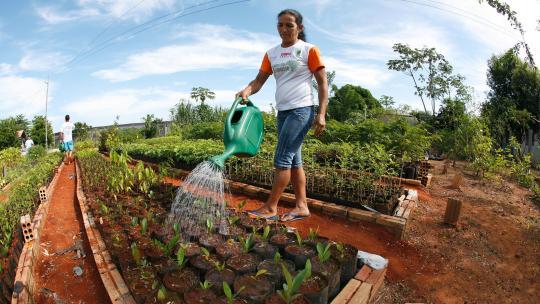 In een speciale tuin wordt getest welke planten het beste groeien.