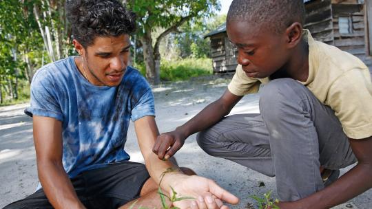 """Wilton: """"Het sap van deze plant stopt het bloeden."""" Foto: Rob Keeris"""