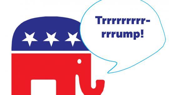 De kleur van de Republikeinen is rood en de mascotte van de partij is de olifant.