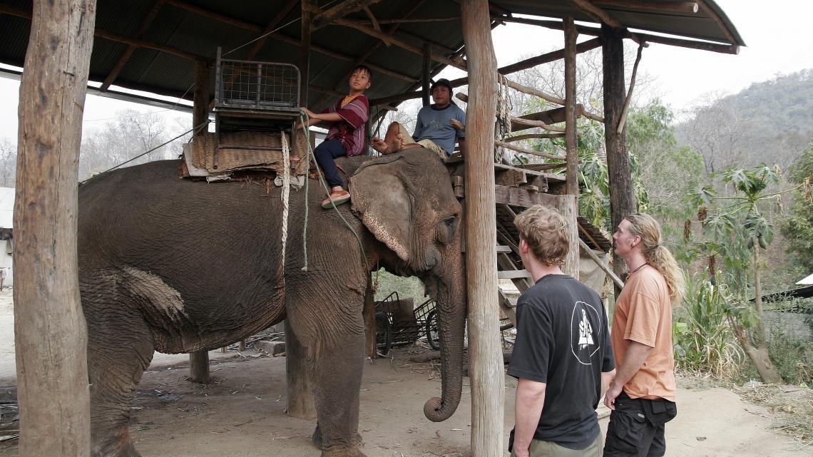 Het gewicht van deze stoel én twee toeristen is veel te veel voor een olifantenrug.