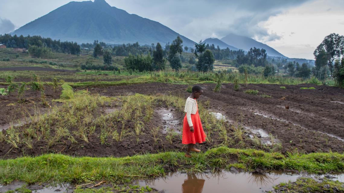 Helaas is toerisme niet alleen maar goed voor Irere's familie. Haar grootouders moeten binnenkort verhuizen en ze weten niet waar naartoe.