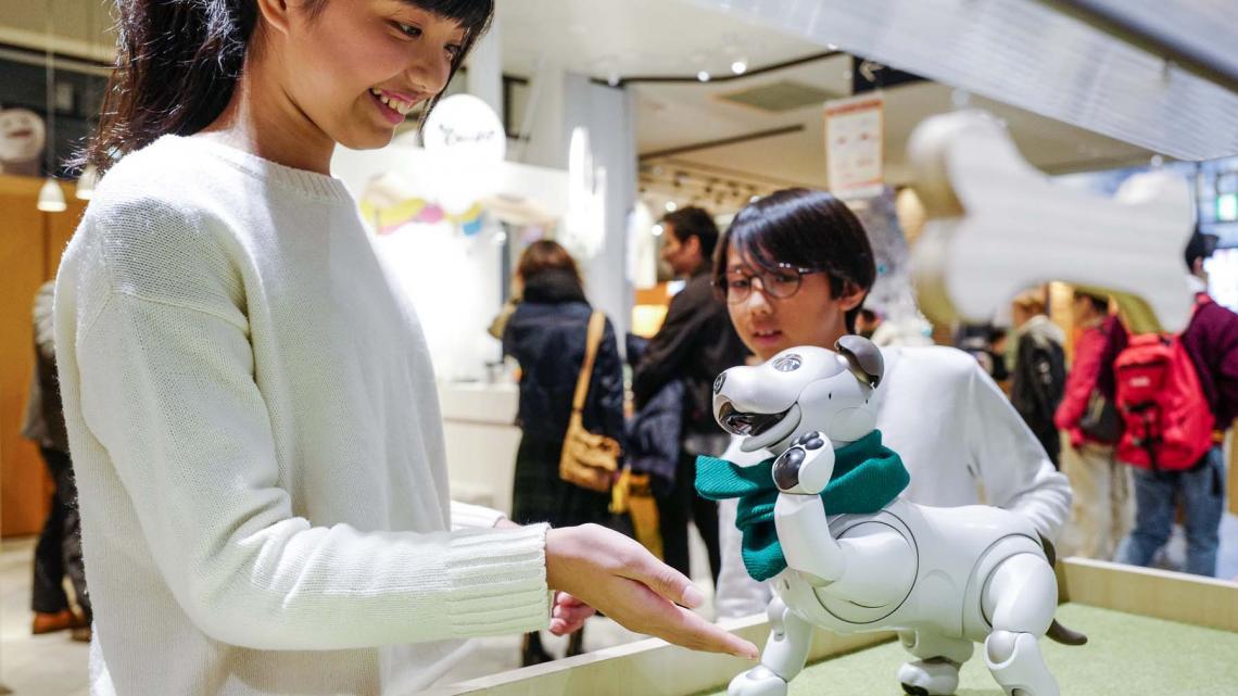 Mion uit Tokio speelt met een robothondje.