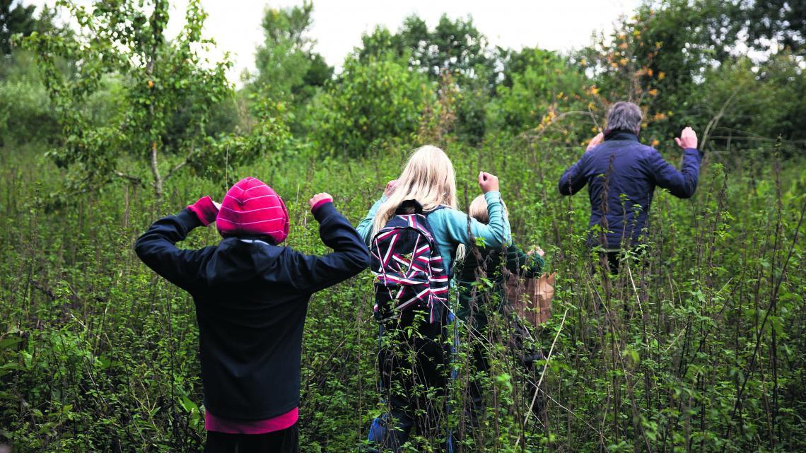 In het voedselbos hebben alle bomen en struiken een eigen taak.
