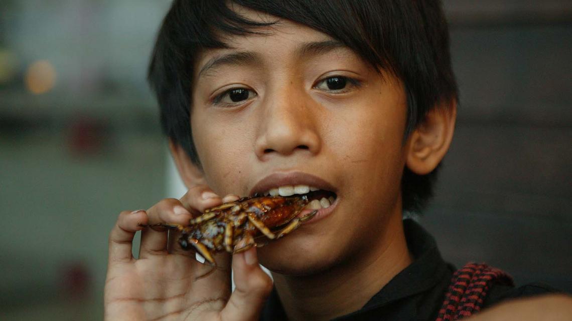 Pow uit Cambodja eet een reuzenkever.