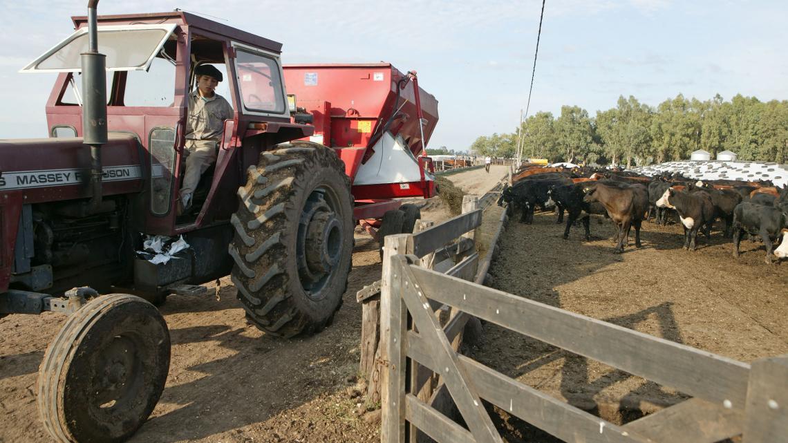Matías is heel handig. Koeien vangt hij met een lasso en de trekker bestuurt hij al vanaf zijn tiende jaar.