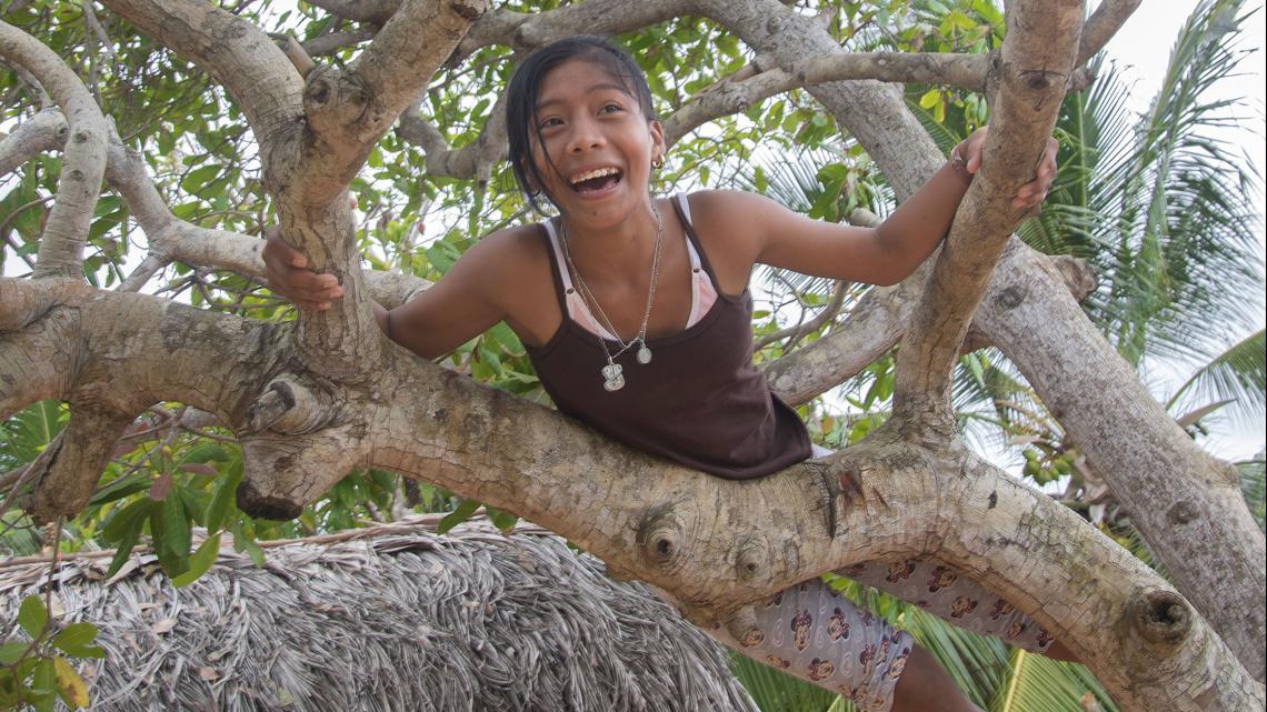 Joisey klimt in een boom om vruchten te plukken.
