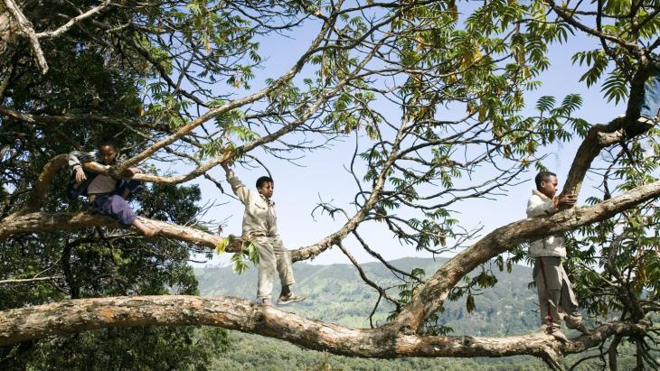 samsam foto ethiopië