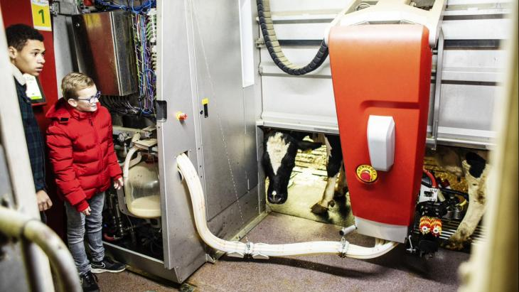 Robots op de melkboerderij