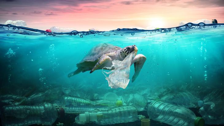 Plasticsoep is een groot probleem voor het milieu.