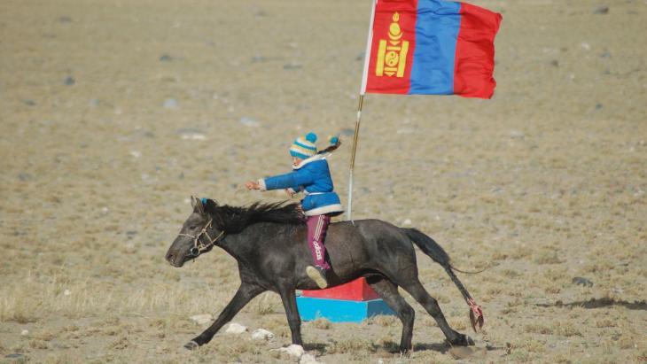 De nomaden in Mongolië hebben allemaal paarden en yaks.