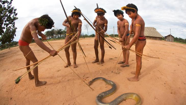 Met een python moet je oppassen, maar is vijf tegen één niet een beetje te veel?