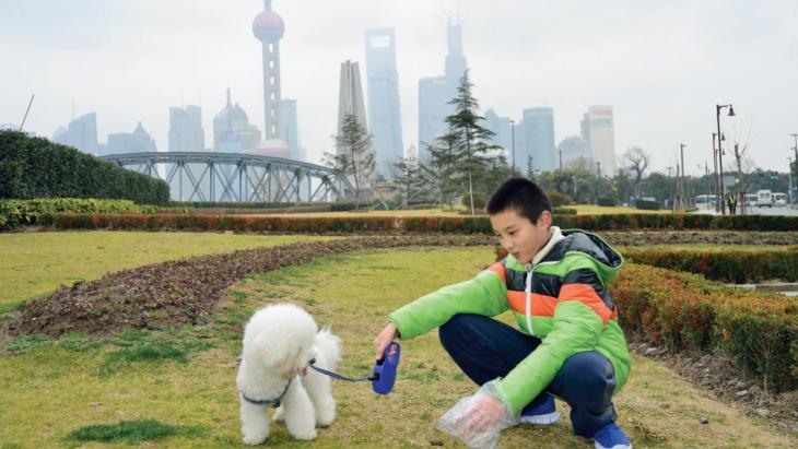 """""""Als ik met XiaoBai (Klein witje) ga wandelen, neem ik een plastic zakje mee."""""""