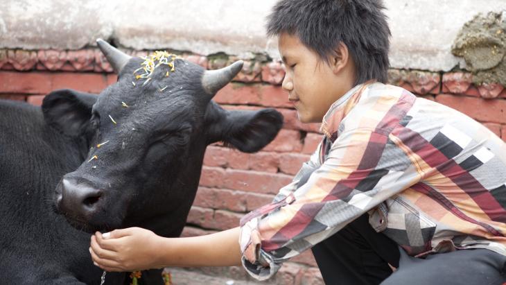 """Joshan geeft de koe water, maar heeft ze eigenlijk wel dorst? """"Hmm, ik denk dat ze liever uit de rivier drinkt."""""""