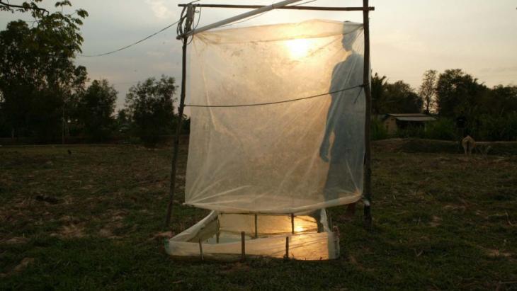 Met deze lamp vangen boeren in Cambodja insecten om op te eten.