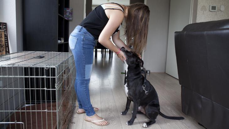 Naomi leert van hond Sylar haar grenzen aangeven.